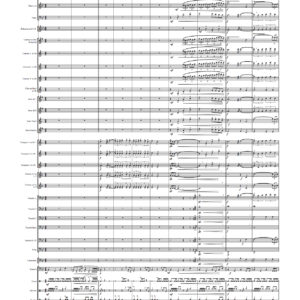 20 de març bo difinitiu partitura